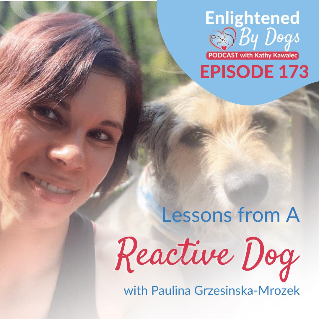 EBD173 Lessons from A Reactive Dog with Paulina Grzesinska-Mrozek