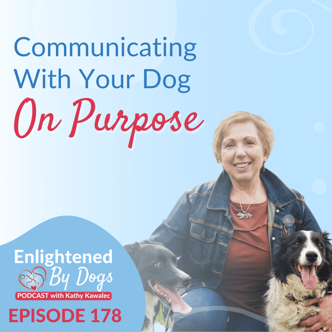 Communicating With Your Dog On Purpose